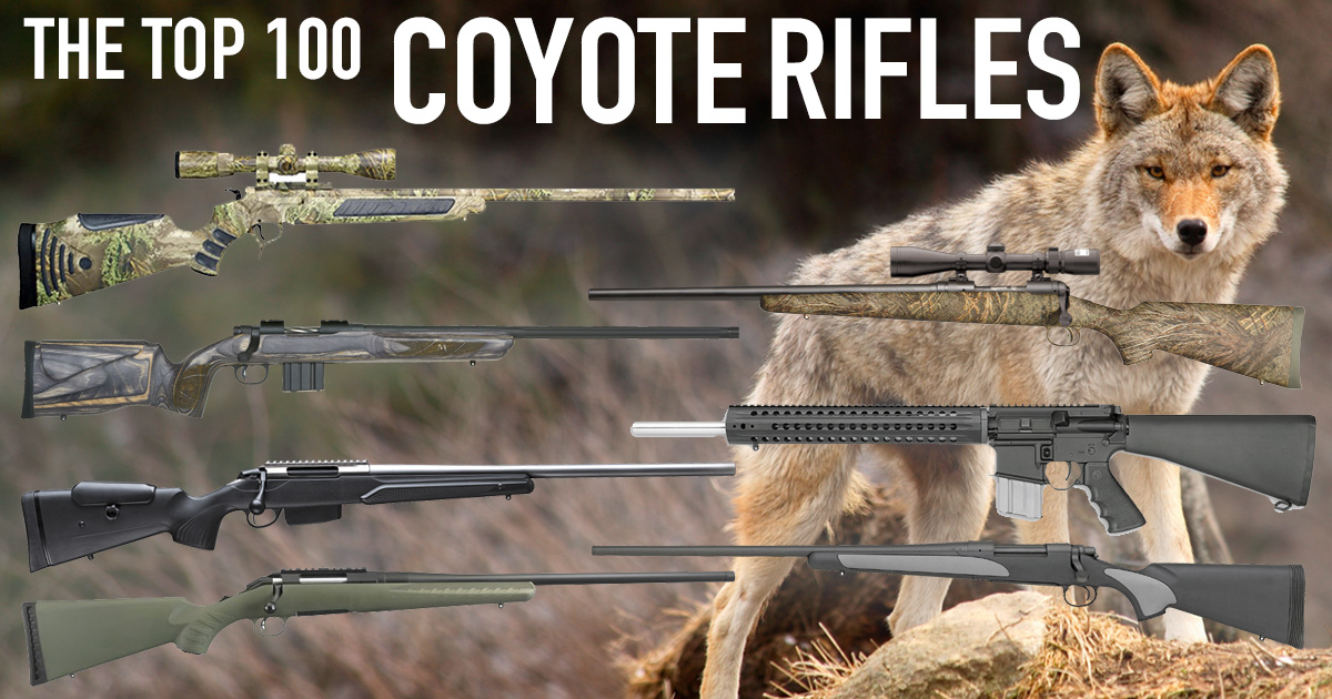 The Best Coyote Gun | 100+ Top Varmint Rifles | Predator