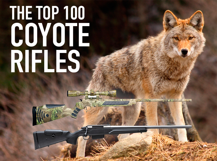 The Best Coyote Guns