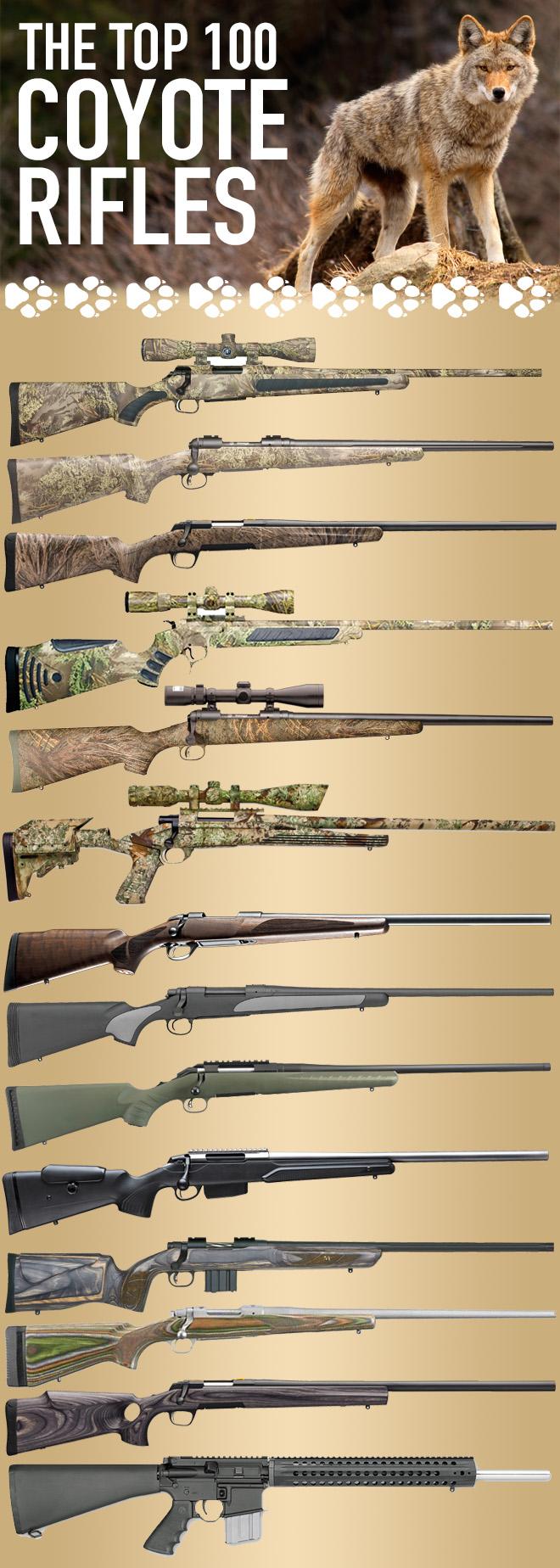 The Best Coyote Gun   100+ Top Varmint Rifles   Predator