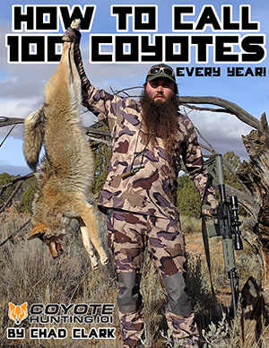 6e738a5ef45ee Coyote Hunting at Night | Tips on How to Hunt Coyotes at Night ...
